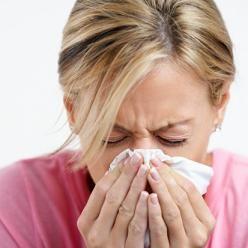 alergijia namuose