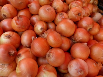 onion_vegetables_svogunai