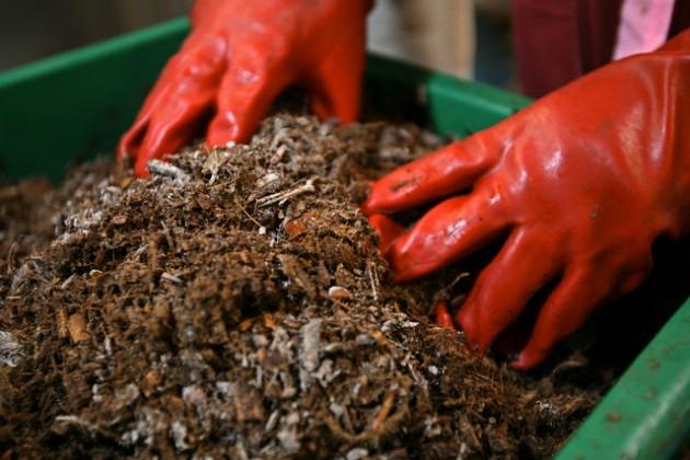 kompostuoti